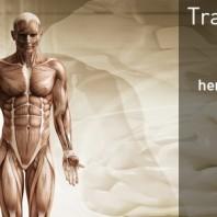 tratamiento dolor fisioterapeuta torrent